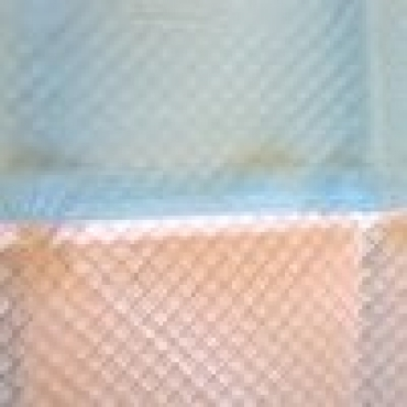 Covorase absorbante Perfect Pad, 60x60 , 30 BUC