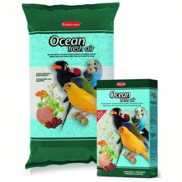 PRODUS OCEAN FRESH AIR 1 KG